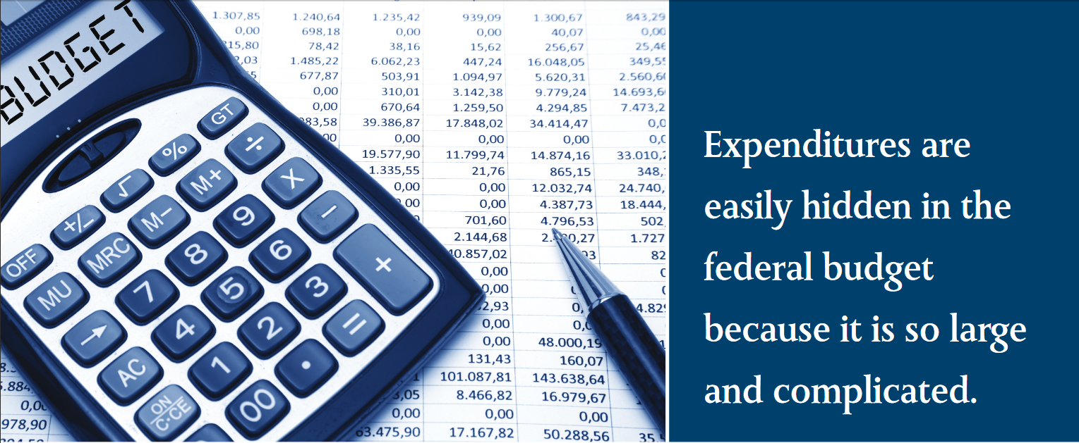 Expenditures are easily hidden in the federal budget because it is so large and complicated.