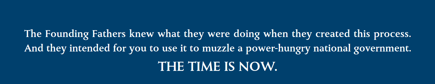 The Founding Fathers knew what they were doing when they created this process. \\ And they intended for you to use it to muzzle a power-hungry national government. \\  THE TIME IS NOW.