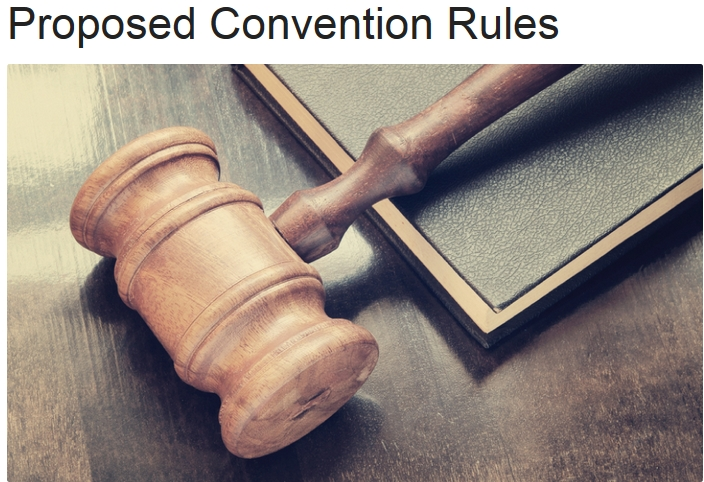 Proposed Convention Rules