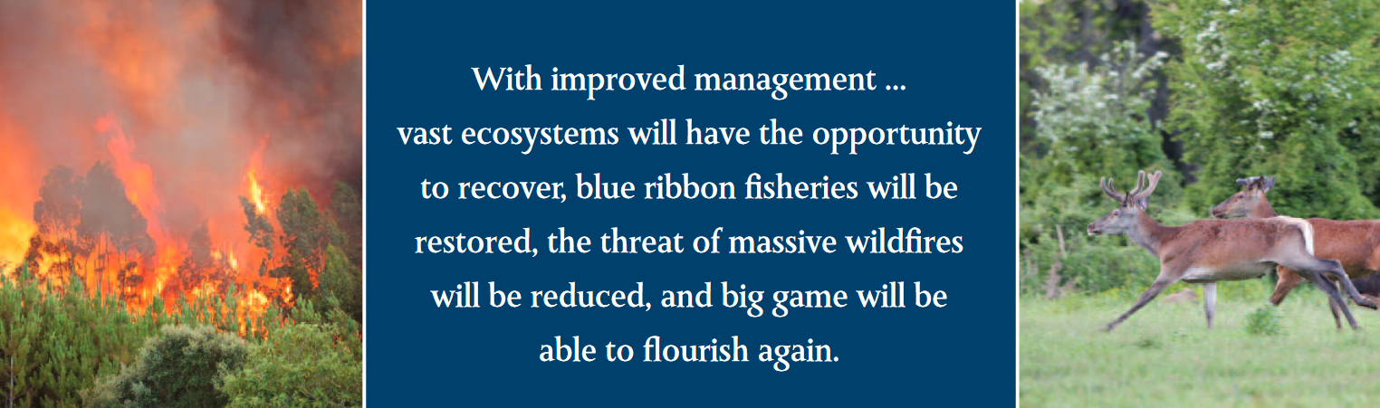 With improved management ... vast ecosystems will have the opportunity to recover, blue ribbon fisheries will be restored, the threat of massive wildfires will be reduced, and big game will be able to flourish again.