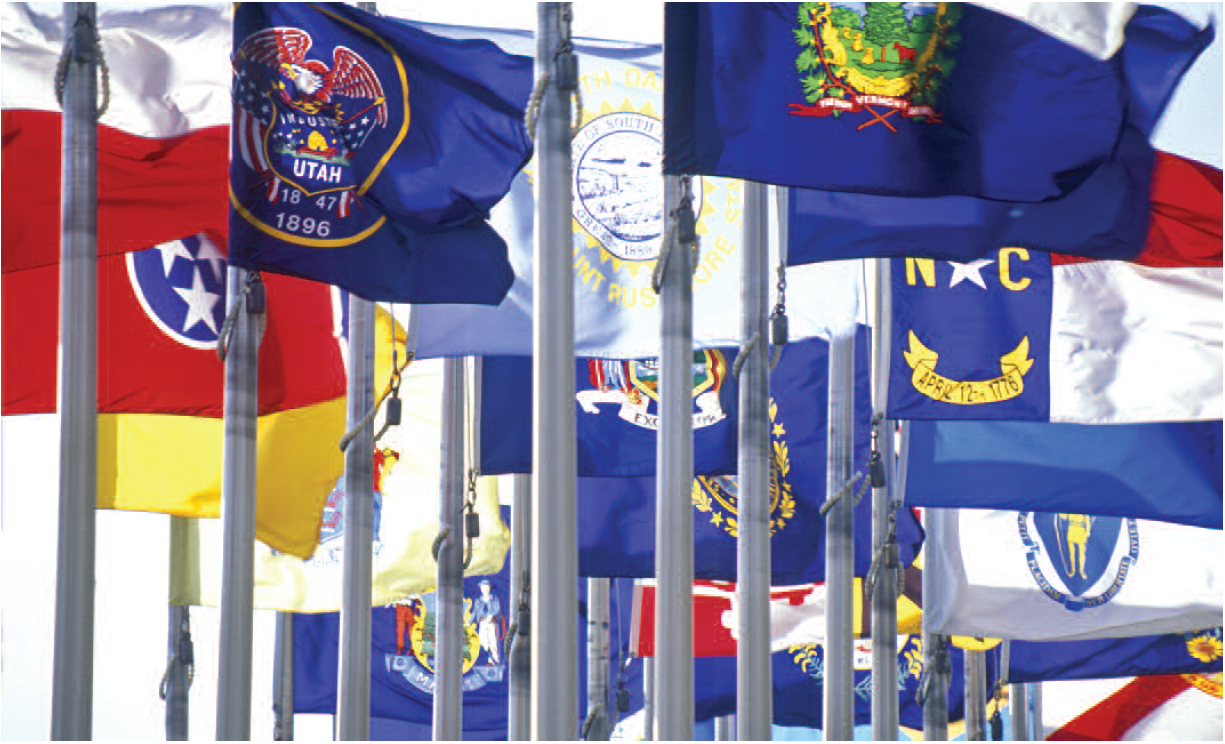 documents:cosproject:state-flags.png