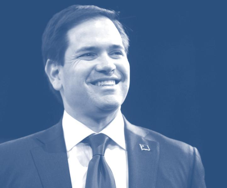 documents:cosproject:pocketguide_rubio.png