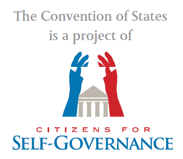 documents:cosproject:selfgovern-com2.png